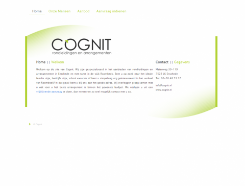 Screenshot of the final website for Cognit.